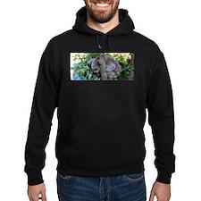 Koala Bear Hoodie