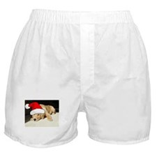 Christmas Golden Retriever PuppyP Boxer Shorts