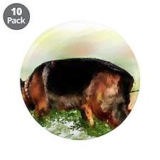 "German Shepherd Tracking 3.5"" Button (10 pack"
