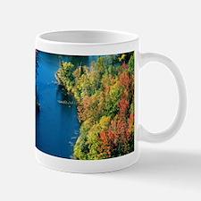 Algonquin Park, Ontario Mug