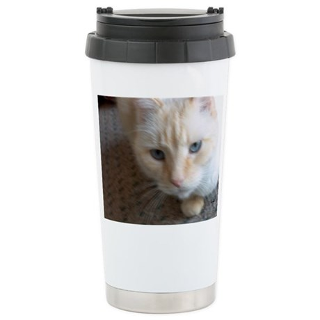 Red Seal Point Ragdoll Cat Stainless Steel Travel