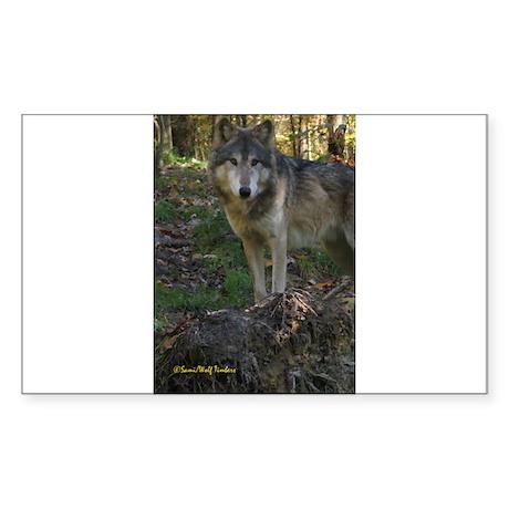 Wolf Posing Rectangle Sticker