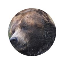 """Grizzly Bear Cute Face 3.5"""" Button"""