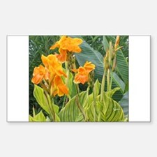 Orange Canna Flowers Rectangle Decal