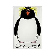 Rockhopper Penguin Rectangle Magnet
