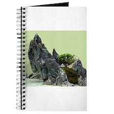 Mountain Bonsai Journal
