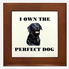 MY PERFECT LAB Framed Tile