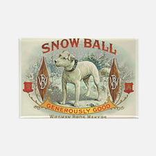 Snow Ball White Dog Vintage Art Rectangle Magnet