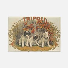 Tripoli Puppy Dogs Vintage Art Rectangle Magnet