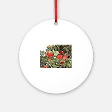 Ohia Lehua Ornament (Round)