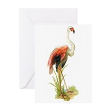 Flamingo Vintage Art Greeting Card