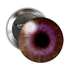 Brown Eye Button