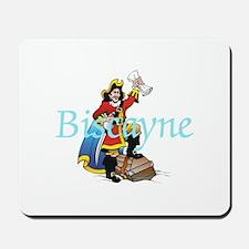 ABH Biscayne NP Mousepad