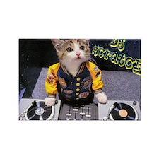 Unique Kitten Rectangle Magnet