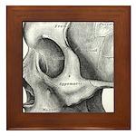 Skull Framed Tile