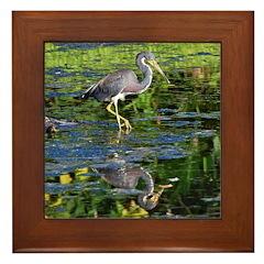 Tri-colored Heron Framed Tile
