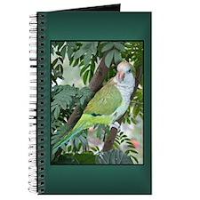 Quaker Parrot Journal