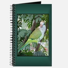 Quaker Parrot Journal