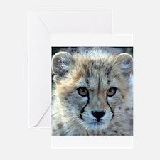 Cheetah Cub Greeting Cards (Pk of 10)