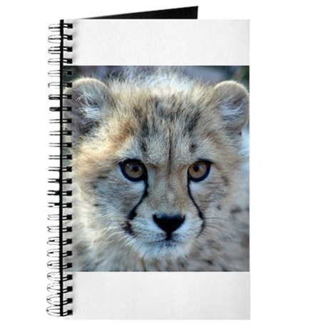 Cheetah Cub Journal