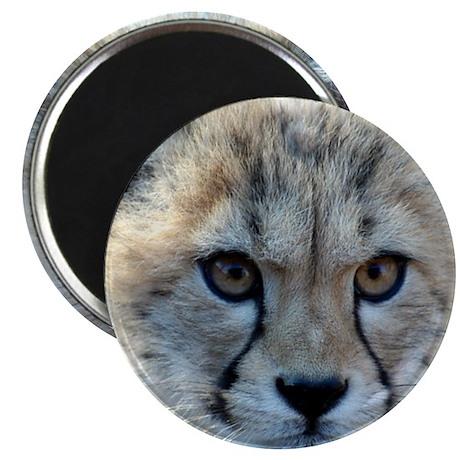 "Cheetah Cub 2.25"" Magnet (100 pack)"