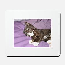 Black and White Kitty Mousepad