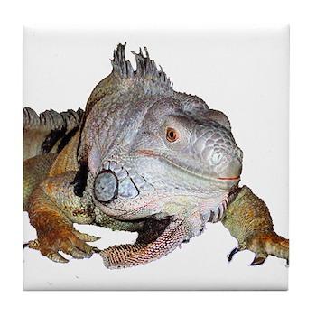 Iguana Tile Coaster