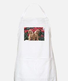 Juba Lee RR Holiday BBQ Apron