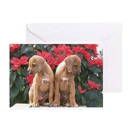 Juba Lee RR Holiday Greeting Cards (Pk of 20)