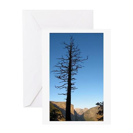 Yosemite Valley Silhouette Greeting Card