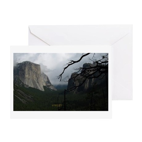 Yosemite Valley Branch & Clouds Greeting Card