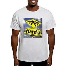 Ash Grey Harold T-Shirt