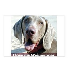 Weimeraner Postcards (Package of 8)