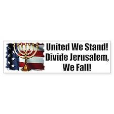United We Stand! Bumper Bumper Sticker