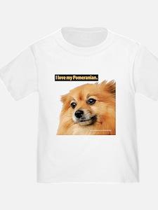 Pomeranian T