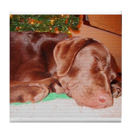 Sleeping Holiday Lab Tile Coaster
