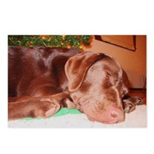 Sleeping Holiday Lab Postcards (Package of 8)