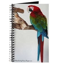 Greenwing Macaw Journal III