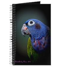 Blue Headed Pionus Parrot Journal