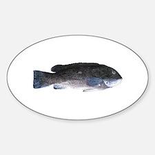Blackfish - Tautog (m) Oval Decal