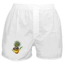 pineapple pineapples Boxer Shorts