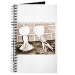 Voorburg Pigeon Pair Journal
