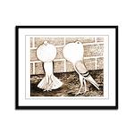 Voorburg Pigeon Pair Framed Panel Print