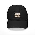 Voorburg Pigeon Pair Black Cap