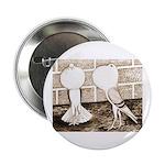 """Voorburg Pigeon Pair 2.25"""" Button"""