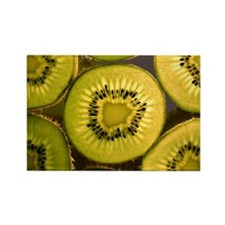 Kiwi Slices Rectangle Magnet