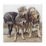 Group Howl Wolves Tile Coaster