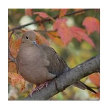Mourning Dove Tile Coaster