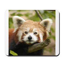 Red Chinese Panda Mousepad