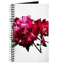 rose_purpletiger Journal